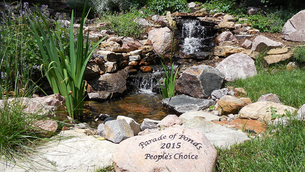 2015-The-Leslie-Pondless-Waterfall