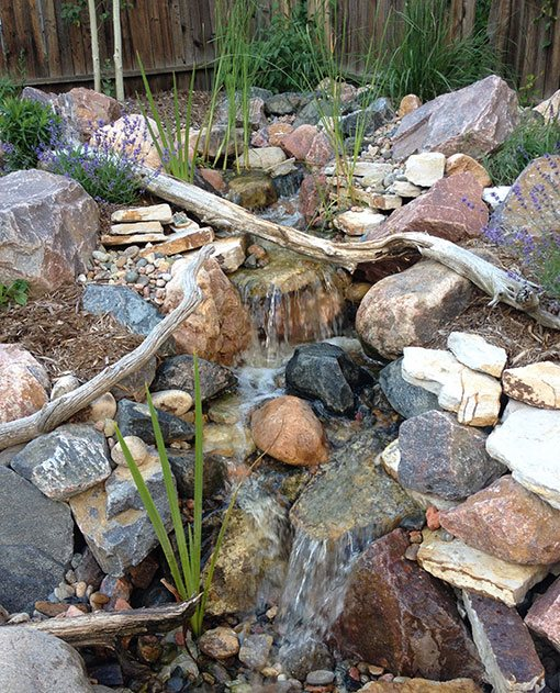 Water Gardens Backyard Pond Supplies Landscape Design